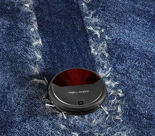 Rowenta RR6943 saugt auf Teppichen