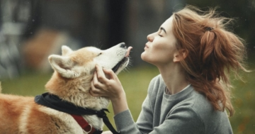 Saugroboter gegen Hundehaare